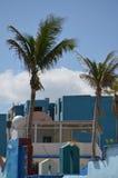 棕榈树和五颜六色的大厦 库存照片