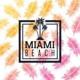 棕榈树和叶子象 迈阿密佛罗里达设计 背景装饰图象风格化漩涡向量挥动 向量例证