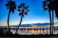 棕榈树和圣地亚哥海湾桥梁 图库摄影
