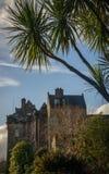 棕榈树和城堡 免版税库存图片