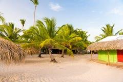 棕榈树和小屋在Bayahibe, La Altagracia,多米尼加共和国 复制文本的空间 免版税库存照片