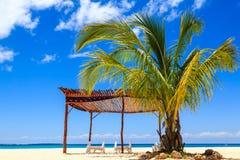 棕榈树和床在一个热带海滩 库存图片