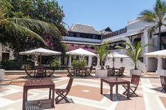棕榈树和桌 免版税库存图片