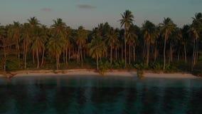 棕榈树和海岸风景的寄生虫射击在Candaraman海岛在巴拉巴克海峡在菲律宾 股票视频