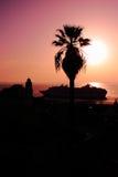 棕榈树和船剪影  免版税库存图片