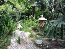 棕榈树和花在日本庭院里 免版税库存图片