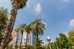 棕榈树和高层建筑物在安塔利亚,土耳其 图库摄影