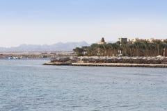 棕榈树和绿叶照片绿洲  沿海滩的堤防在Makadi,埃及 免版税库存图片