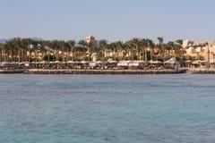 棕榈树和绿叶照片绿洲  沿海滩的堤防在Makadi,埃及 库存照片