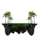 棕榈树和绿草领域在浮动海岛用途多用途背景的 库存照片
