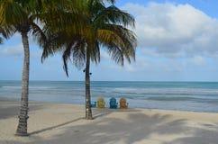 棕榈树和Adirondak椅子在一个白色沙子海滩 免版税库存照片