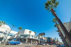 棕榈树在好莱坞大道 库存照片