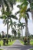 棕榈树在巴厘语庭院里 免版税库存图片