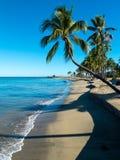 斐济海滩 免版税图库摄影