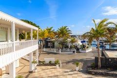 棕榈树在Puerto Calero小游艇船坞 免版税库存图片