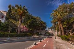 棕榈树大道, Kos海岛,希腊 库存图片