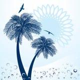 棕榈树太阳和海鸥   库存图片