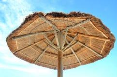 棕榈树屋顶 免版税图库摄影