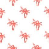 棕榈树无缝的传染媒介样式 库存图片