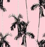 棕榈树无缝的背景 图库摄影