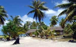 棕榈树海和沙子 免版税库存照片
