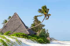 棕榈树海洋围拢的白色沙滩的盖的平房 库存图片