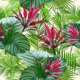 棕榈树热带叶子和花 无缝的模式 皇族释放例证图片