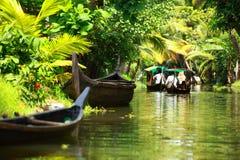 棕榈树热带森林在Kochin,喀拉拉,印度死水  库存照片