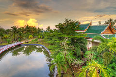 棕榈树热带风景在日落的 免版税库存图片