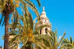 棕榈树特写镜头,在背景中Sant Bartomeu和圣特克拉教会的塔在锡切斯,巴塞罗那,西班牙 库存照片