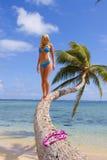 棕榈树的妇女 免版税库存图片