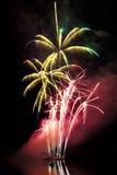 以棕榈树的形式大五颜六色的烟花 库存图片