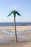 以棕榈树的形式阵雨在纽约兔子海滩  免版税库存图片