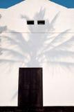 从棕榈树的阴影在白色房子的墙壁上落 海报的概念性照片 库存图片