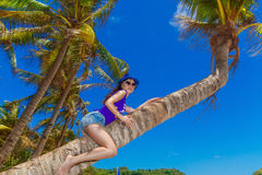 棕榈树的年轻美丽的亚裔女孩在一个热带海滩 库存照片