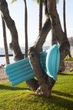 棕榈树的Lilo在海滩 免版税库存图片