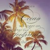 棕榈树美好的instagram与太阳设置的在他们后 库存图片