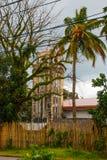 棕榈树背景的宽容大教堂在菲律宾 Pandan,班乃岛 免版税库存图片