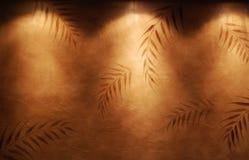 棕榈树背景 免版税库存图片