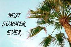 棕榈树蓝色SkyBottom视图最佳的夏天inscripton 图库摄影