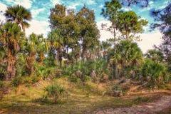 棕榈树补丁  库存照片
