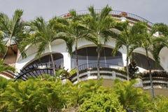 棕榈树被装饰的窗口 免版税库存图片