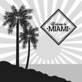 棕榈树象 迈阿密佛罗里达设计 背景装饰图象风格化漩涡向量挥动 向量例证