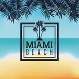 棕榈树象 迈阿密佛罗里达设计 背景装饰图象风格化漩涡向量挥动 库存例证