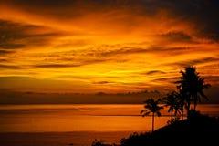棕榈树,明亮的黄色云彩,在一个热带海岛上的浪漫海滩剪影在日落期间 库存图片