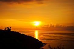 棕榈树,明亮的黄色云彩,在一个热带海岛上的浪漫海滩剪影在日落期间 免版税库存图片