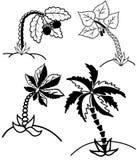 棕榈树collectionÂŒ 库存照片
