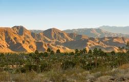 棕榈泉和圣哈辛托山 免版税库存图片