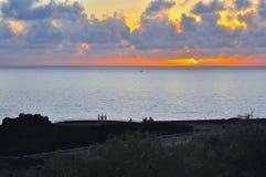 棕榈的海岛 免版税库存图片