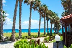 棕榈胡同在普罗塔拉斯,塞浦路斯 免版税库存照片